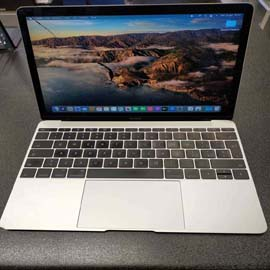 "MacBook A1534  12"" Retina (Anno 2015) - Core M 1,1 GHz - SSD 256 GB - 8GB"